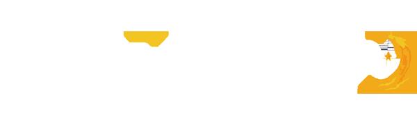 ホームページデザイン繁昌デザインロゴ